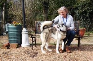 bernardine-with-boarder-dog